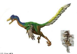 Bilinen ilk kuş benzeri zehirli dinozor Sinornithosaurus
